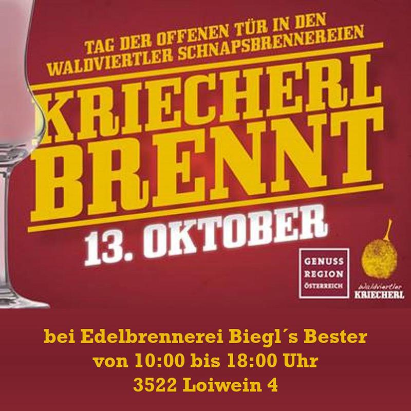 KriecherlBRENNT_beiBiegl